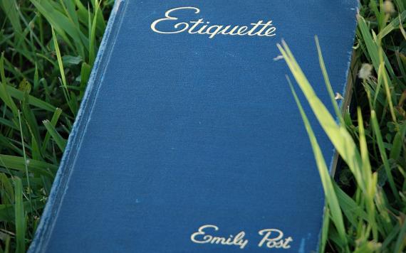 Blaues Buch im Gras